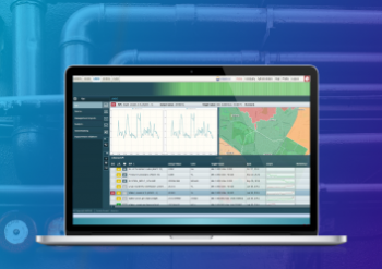 Utility monitoring and management system