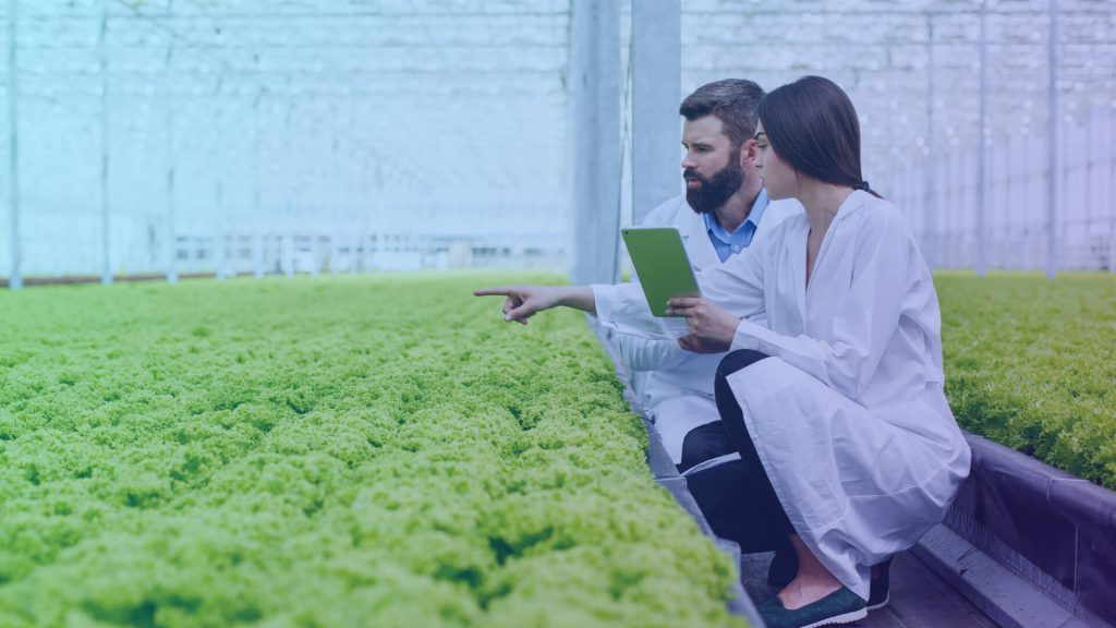 Connected Farming: A Guide for Agribusinesses